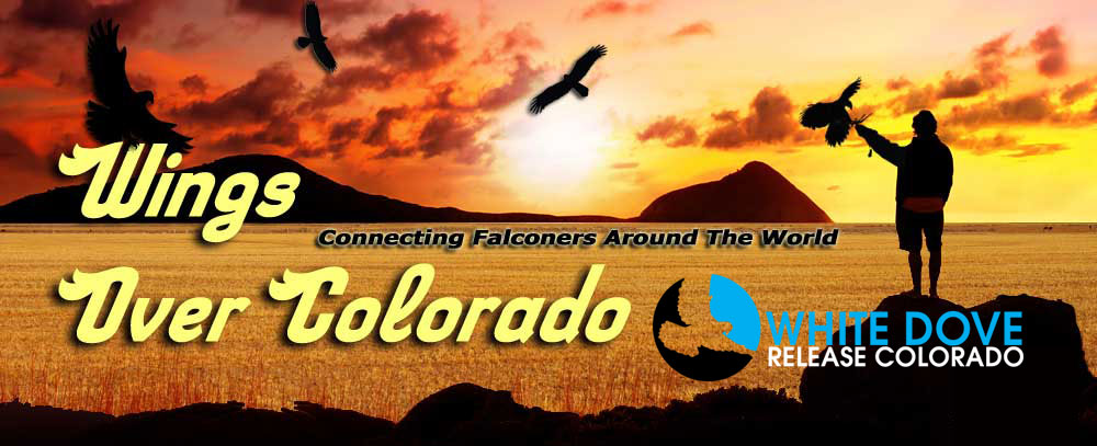 ''Wings Over Colorado'' Website Launch